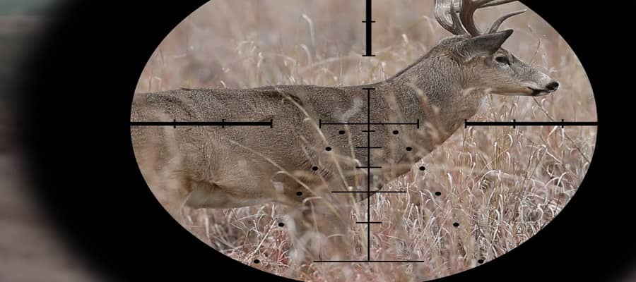 best scope magnification for deer hunting
